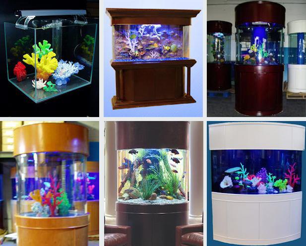 Aquariums in NJ from Fish Guys | Fish Guys